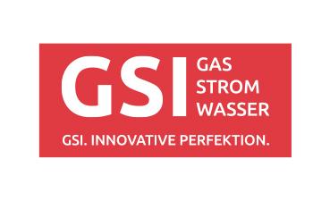 GSI DSC Sponsor