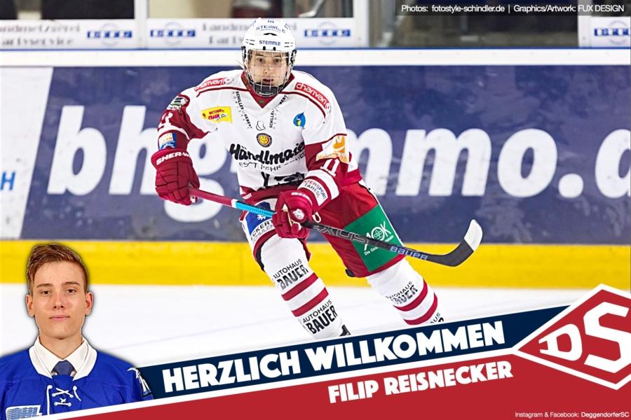 Chancen für junge Talente: DSC verpflichtet Filip Reisnecker aus Regensburg – Marlon Wolf nach Salzburg