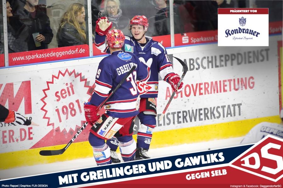 Deggendorfer SC will mit Greilinger und Gawliks gegen Selb zurück in die Erfolgsspur