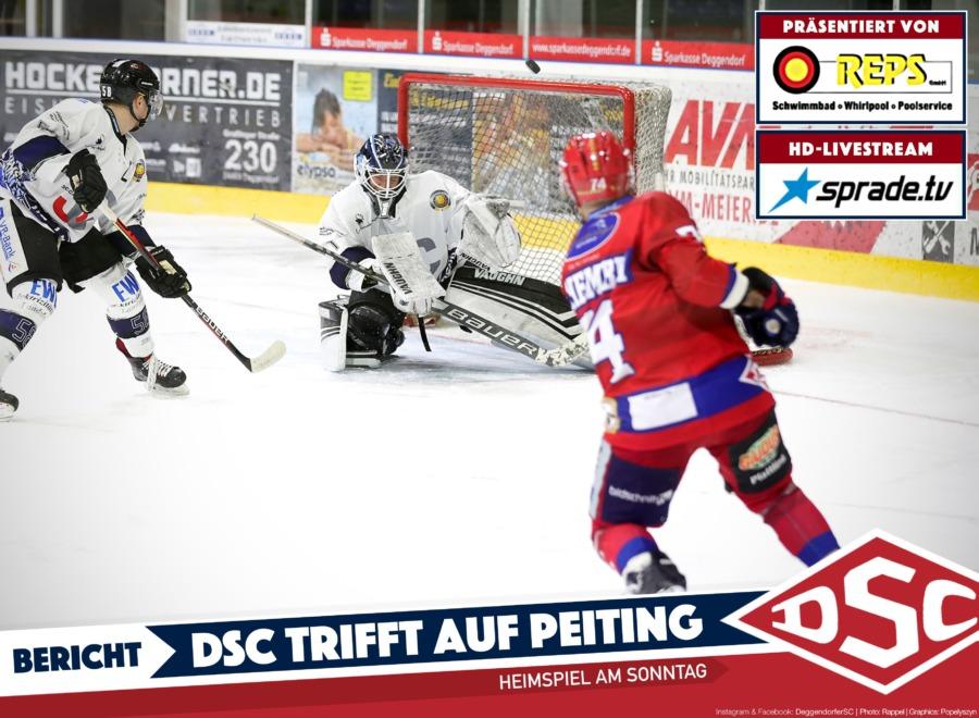 Deggendorfer SC vor wichtigem Duell mit dem EC Peiting