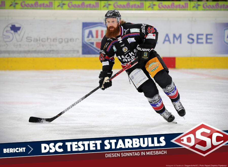 Nächster Halt: Rosenheim – DSC testet gegen die Starbulls
